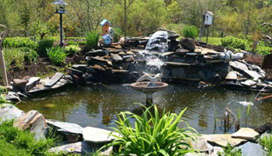 pond-slide